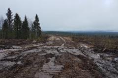 Metsäautotien kaivuu
